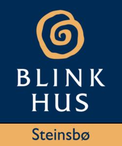 BLINK HUS Steinbø